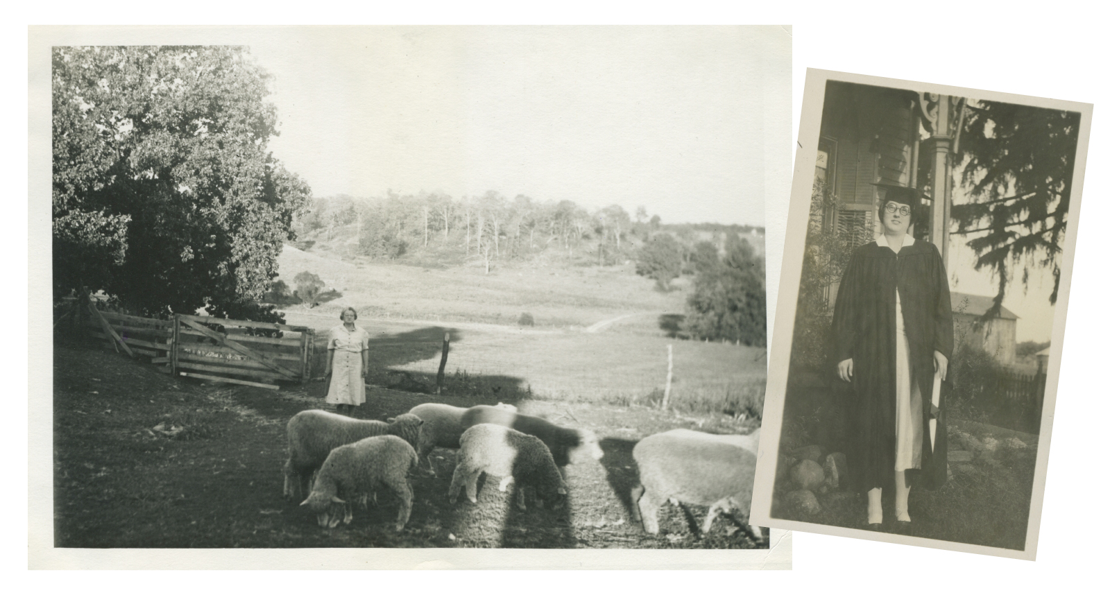 Lessons on the Land: Anna Hobart looks after the sheep on the farm, just a few of the animals that called the place home (left). Dorothy Hobart on her Denison graduation day in 1925 (right).