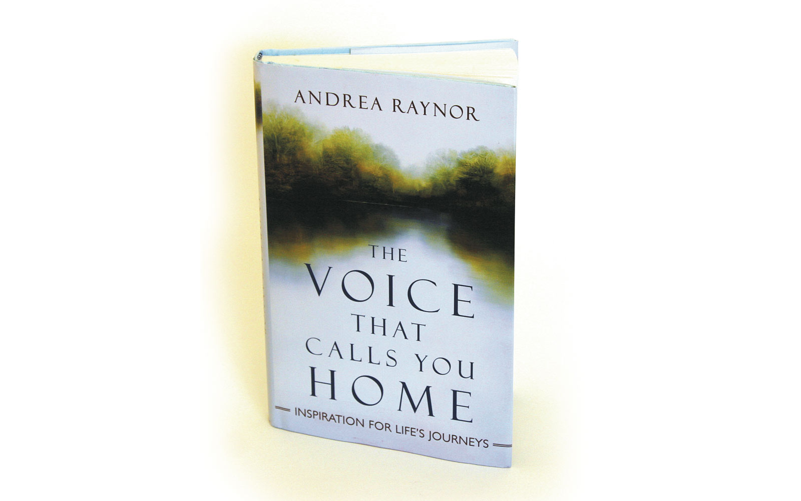 As Raynor and her editor, Peter Borland, worked to choose an artist to create the cover image for her new book, The Voice that Calls You Home, each separately came in contact with artist and Raynor's fellow classmate Peter …
