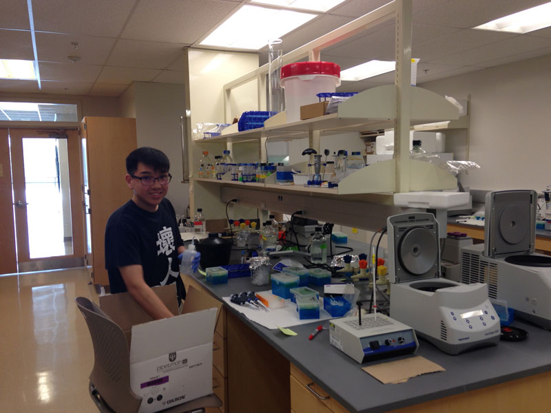 Student 8 working in the lab