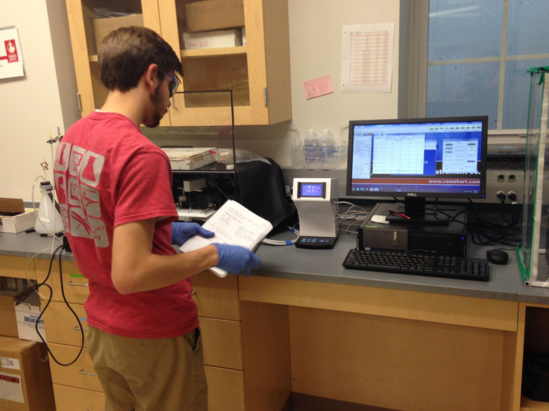 Student 4 working in the lab
