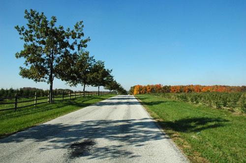 Infirmary Mound Park