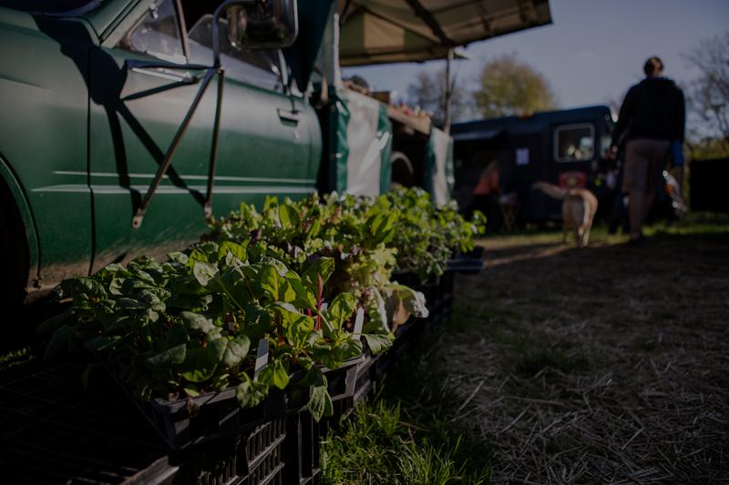 Truck at farmers market