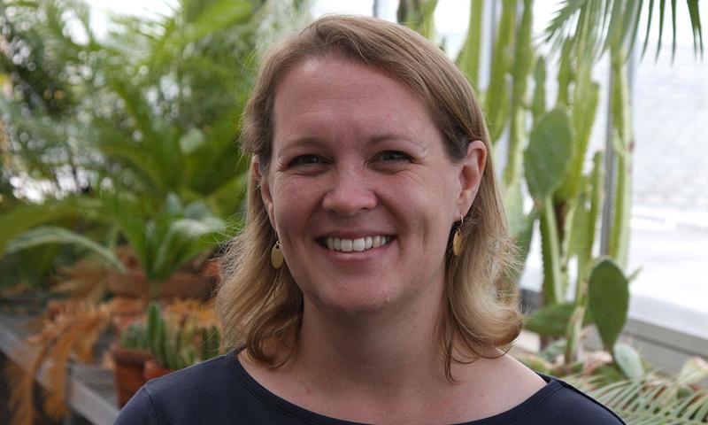 Rebecca Homan
