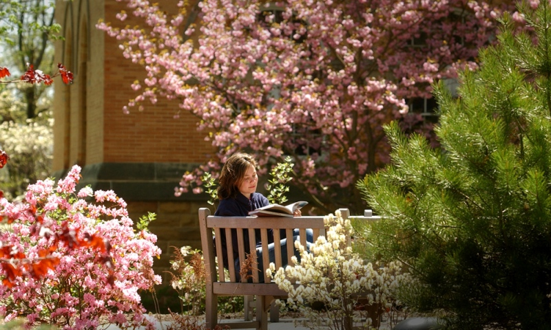 Student reading on the academic quad