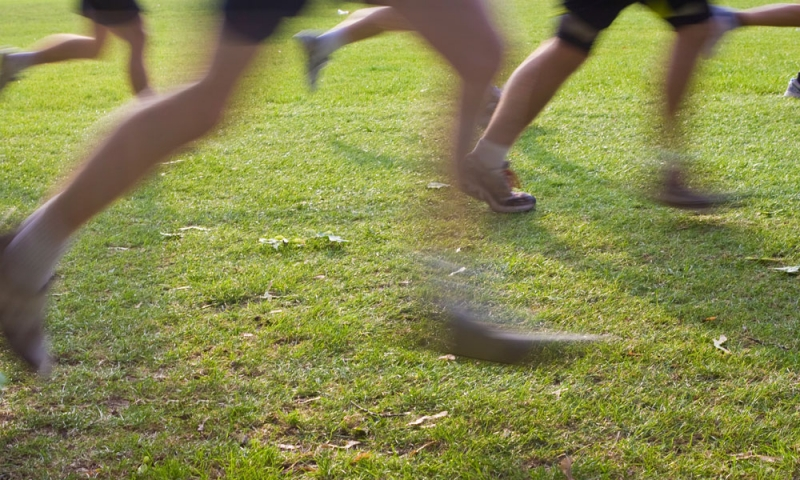 Women's Cross Country All-Ohio Championship | Sat, 28 Sep 2019 00:00:00 EDT