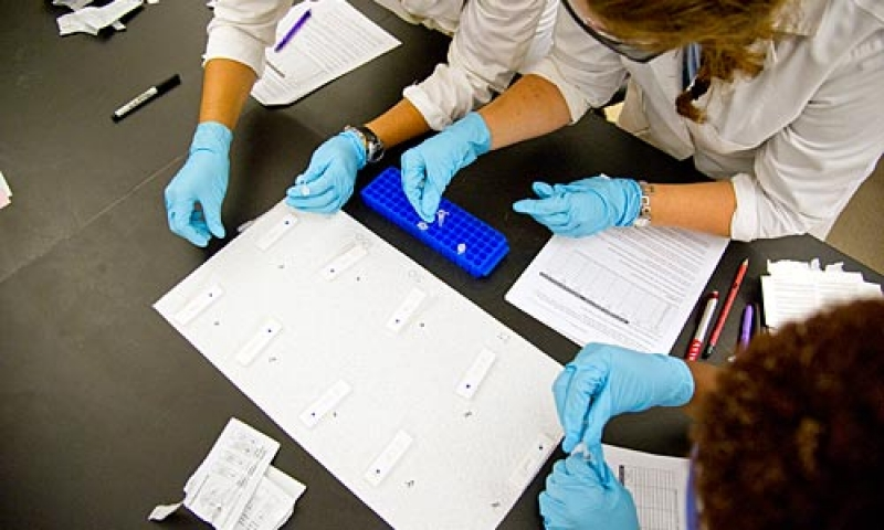 Students work in a science laboratory