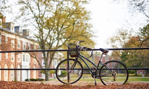 photograph of a bike on campus in the fall