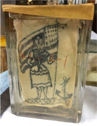 Example of tattoo on preserved skin