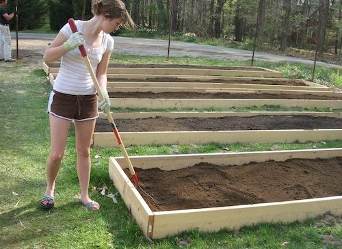 Denison Community Garden