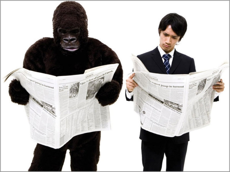Gorilla and man reading newspapers