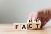 Fake/Fact blocks