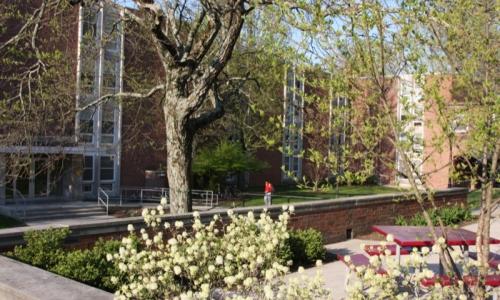 Shorney Hall
