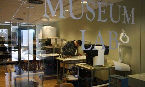 Student Intern working in the Museum Lab