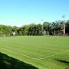 Barclay- Thomsen Field