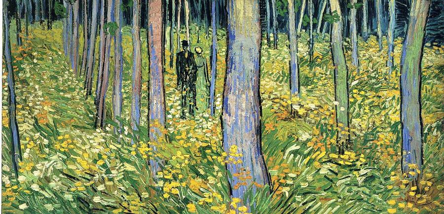 Van Gogh: Into the Undergrowth