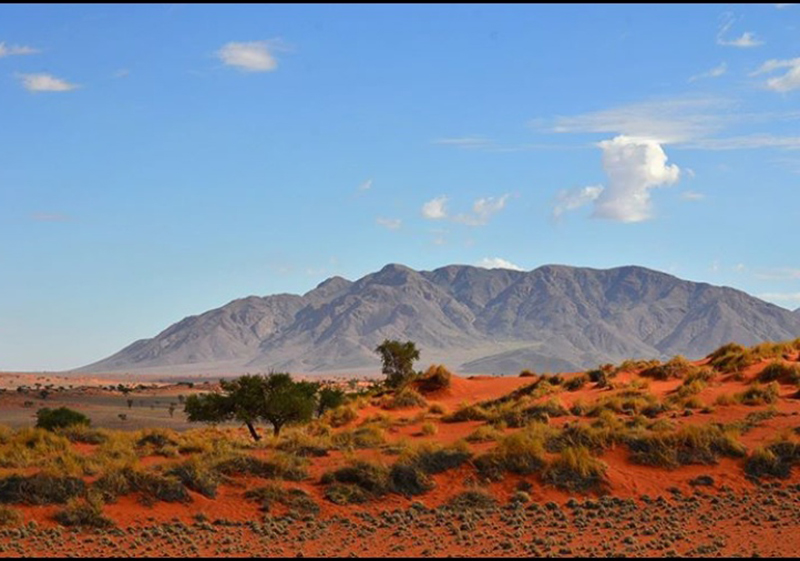 Wehman '17-red sand of Namibia